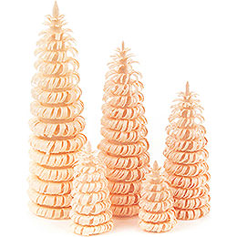 Coiled Trees without Trunk Natural  -  5 pieces  -  10cm / 3.9 inch